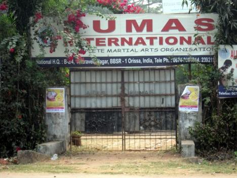 the martial art institute