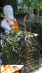 statue of gopabandhu in gopabandhu bhawan dismantled