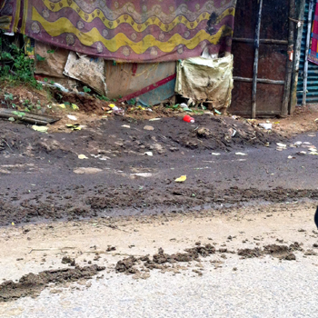 flow of cow dung on western main road to Capital Hospital